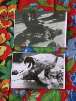 Catalogo Lygia Clark, Mostra alla